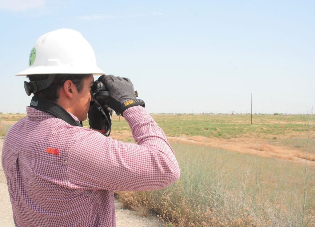 Aera Environmental Specialist Aaron Aguilera searches for native species at the Coles Levee Ecosystem Preserve southwest of Bakersfield. Aera owns and manages the 6,000-acre conservation property.